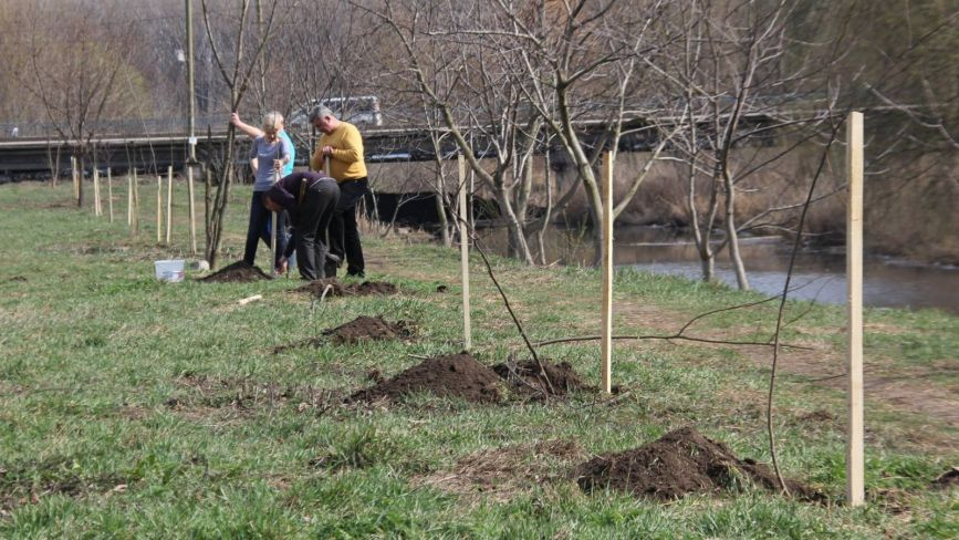 Нове завдання хмельницької поліції – охороняти дерева, які мерія висадила