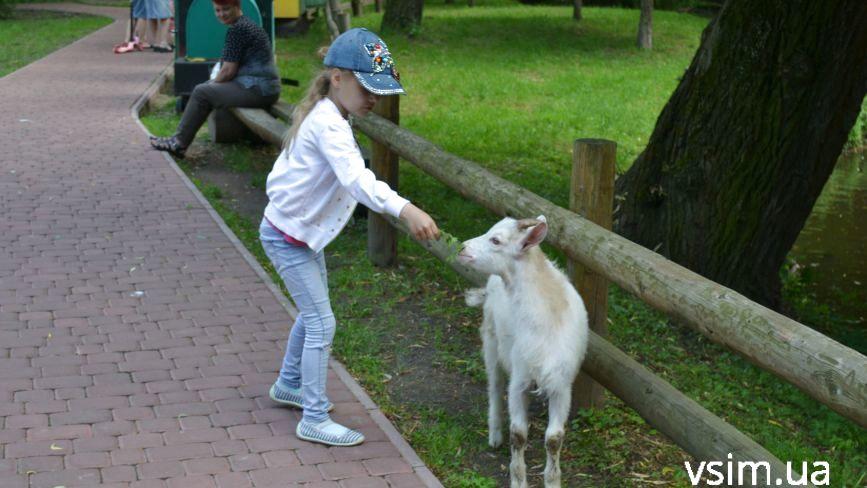 Як та за скільки утримують тварин в зоокутку, що в парку Чекмана