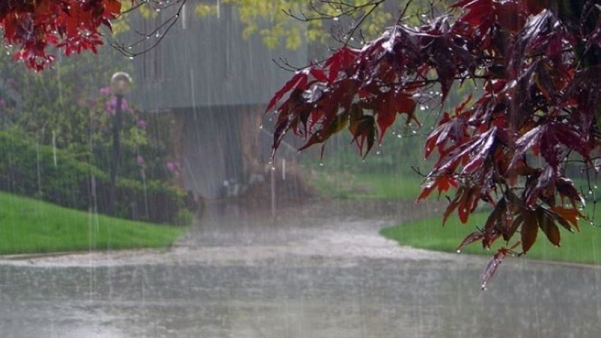 Дощі випадатимуть по всій Україні: прогноз погоди на 19 вересня