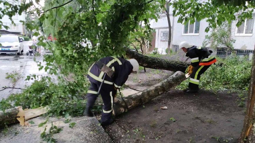Підпалені блискавками будівлі та повалені дерева: наслідки негоди на Хмельниччині