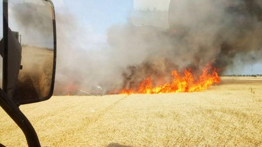 На Хмельниччині загорілось поле з пшеницею (ФОТО)