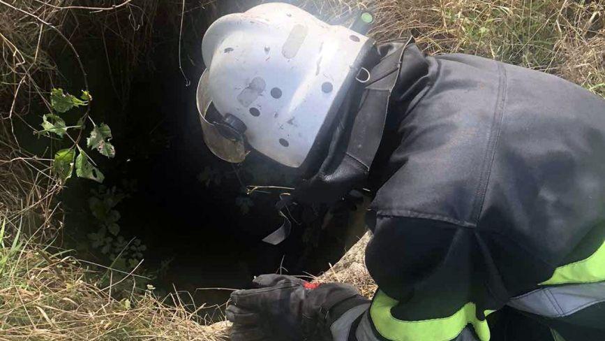 На Хмельниччині врятували собаку із 4-метрової ями