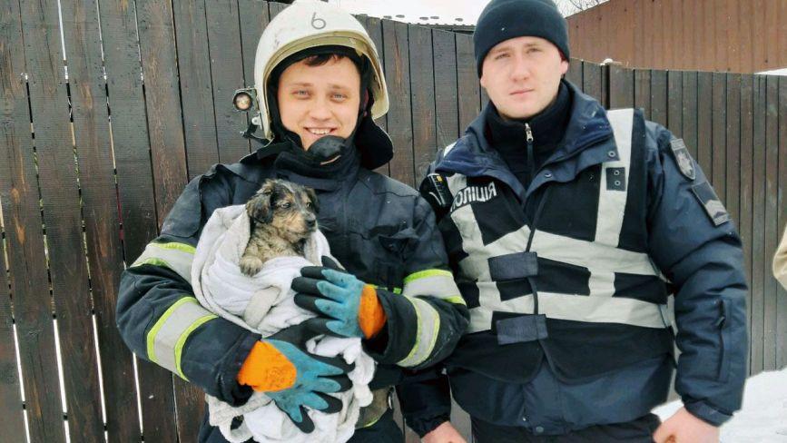 На Хмельниччині з палаючого будинку врятували цуценят (ФОТО)