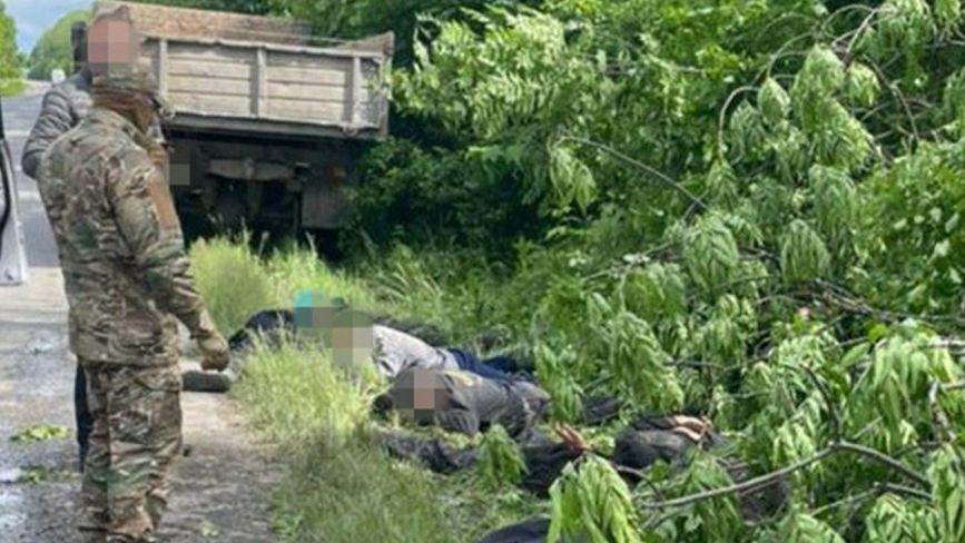Мільйонні збитки: на Хмельниччині незаконно рубали дерева на території нацпарку (ФОТО)