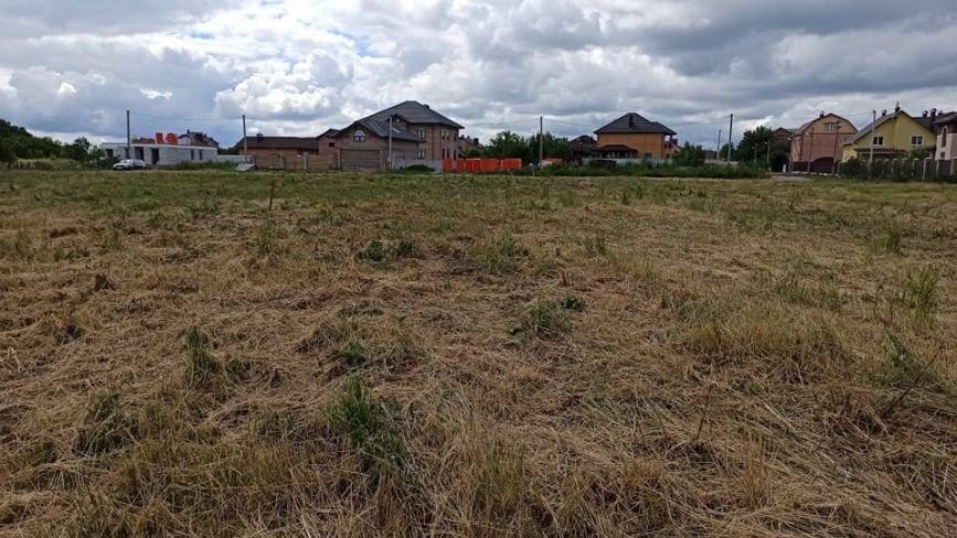 Висаджений перед виборами «Новий парк» в Дубовому перетворився в пустир. Що кажуть у міськраді