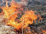 На Хмельниччині утримується високий рівень пожежної небезпеки. Що не можна робити?