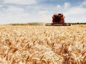 Верховна Рада підтримала у першому читанні законопроект № 6527-д, який розробили у профільному аграрному комітеті (прес-служба Сергія Лабазюка)