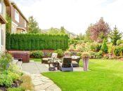 Ідеї для оформлення подвір'я та будинку