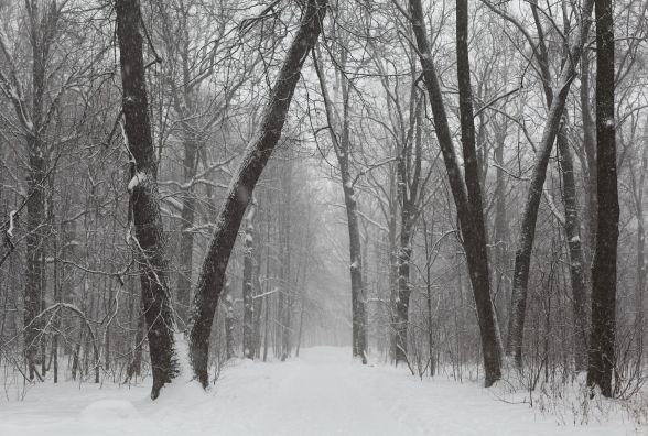 В перший день нового року у Хмельницькому ясна погода