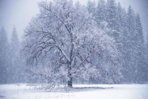 14 січня у Хмельницькому можливий сніг