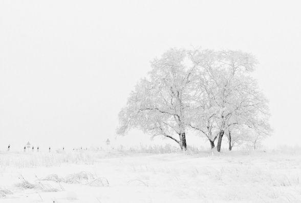 17 січня у Хмельницькому без опадів