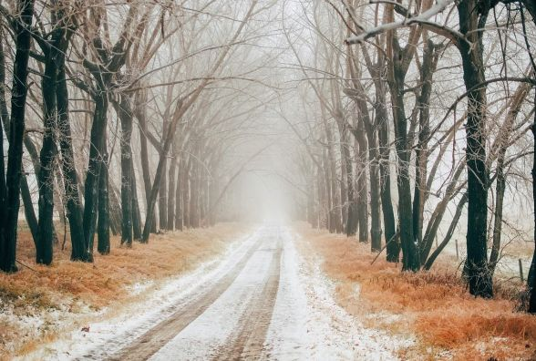 Синоптики прогнозують туман. Хмельницьких водіїв просять бути обережними