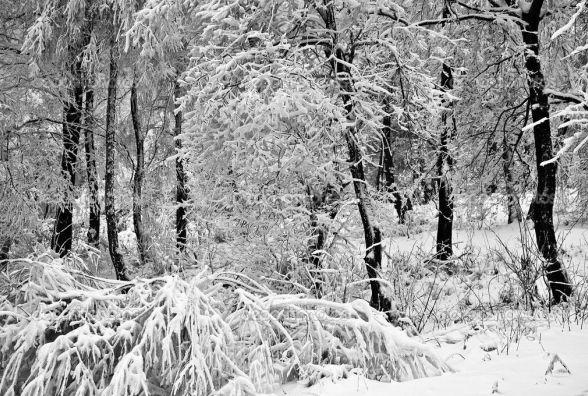 26 січня у Хмельницькому хмарно
