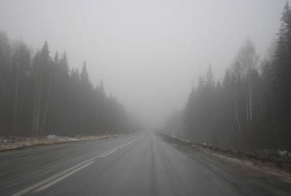 Синоптики попереджають про густий туман на Хмельниччині
