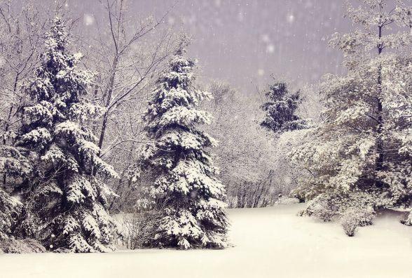 У неділю, 5 лютого, в Хмельницькому сніг
