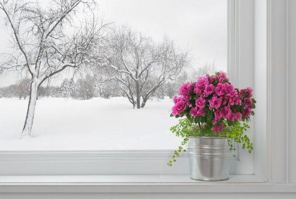 24 лютого у Хмельницькому потепліє