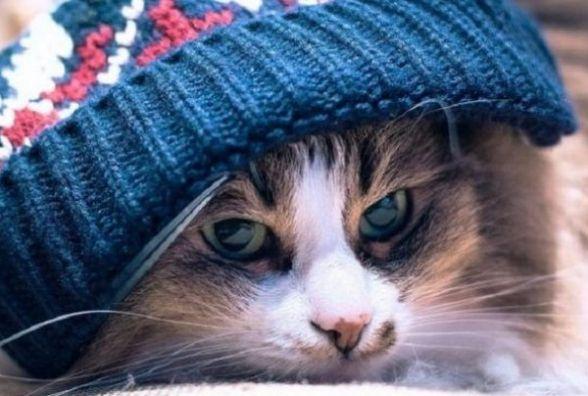 Не ховайте теплі речі: синоптики прогнозують сніг з дощем