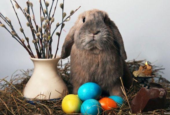 Редакція vsim.ua вітає читачів з Великодніми святами!