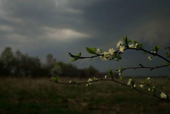 9 травня у Хмельницькому хмарно