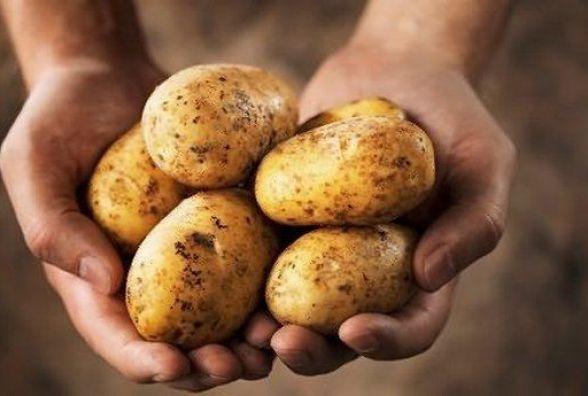 Через морозну весну можуть вирости ціни на фрукти та овочі