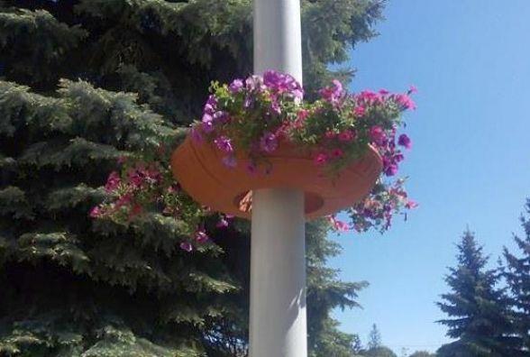 Чверть мільйона на квіти: вулиці Хмельницького прикрасять підвісними клумбами