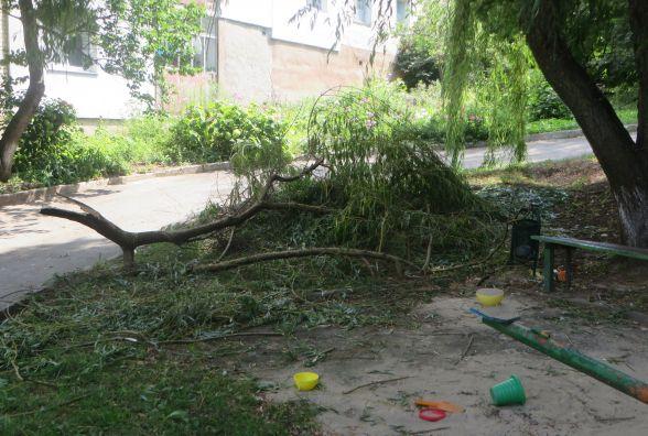 Фото дня: на дитячий майданчик по Тернопільській впало дерево
