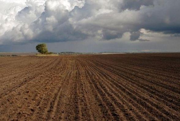 У Ярмолинецькому районі через суд у підприємця забрали майже 74 гектари землі