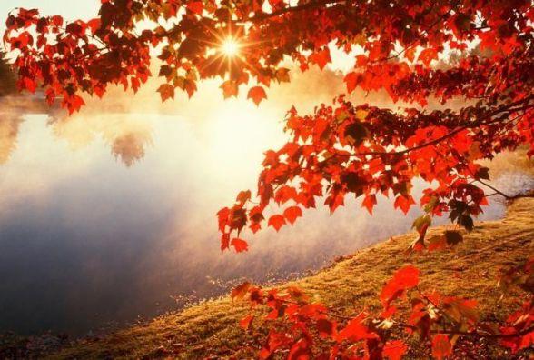 18 вересня - день пам'яті Єлизавети та Захарія. Що необхідно зробити