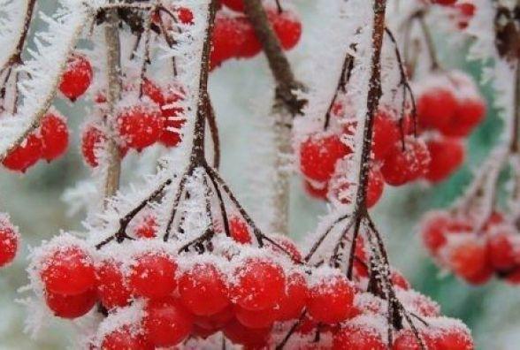 19 листопада - Павла Сповідника: у цей день визначали, якою буде зима