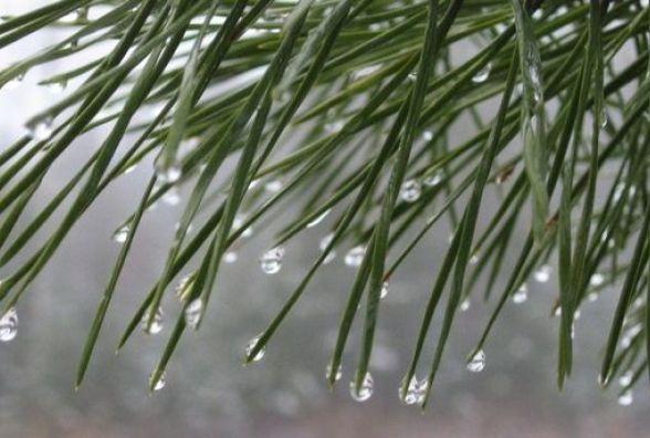 Дощ і потепління: синоптики розповіли, яким буде останній тиждень 2017 року у Хмельницькому
