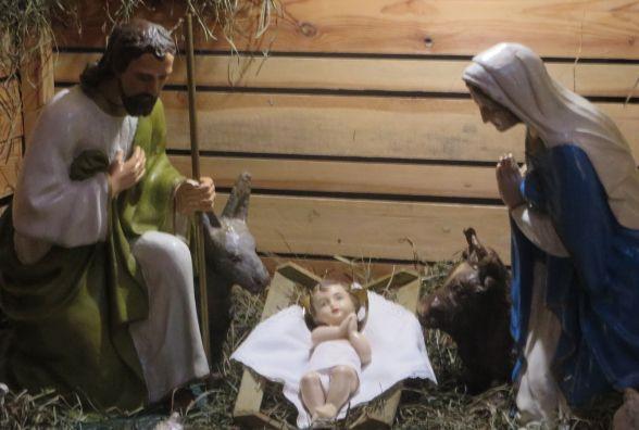 Живі овечки і декорації: в костелах Хмельницького встановили різдвяні вертепи