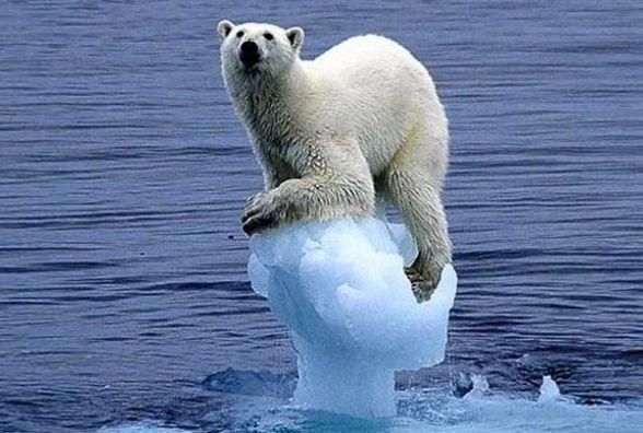 """""""Один із найтепліших років"""": головний синоптик розповів про особливості дії глобального потепління"""