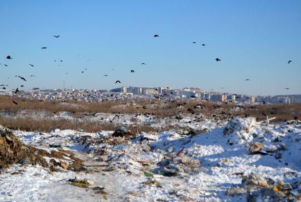 На переповненому хмельницькому сміттєзвалищі звільнять місце для нових відходів