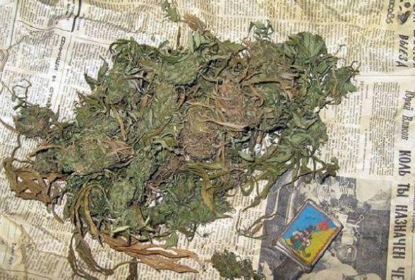 У Городоцькому районі ліцеїст продавав марихуану прямо в гуртожитку