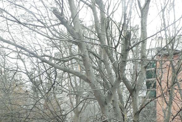 """""""Циклонічний серіал завершується"""": погода у Хмельницькому на понеділок, 5 березня"""