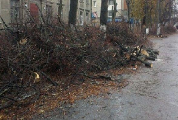 Обмежать рух та змінять маршрут тролейбусів по Львівському шосе