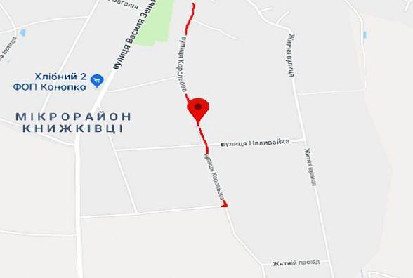 """""""Болота по вуха"""": Юлія із Книжківців просить відремонтувати дорогу на її вулиці"""