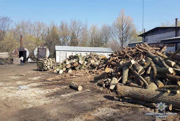 Поблизу Хмельницького облаштували незаконний цех з випалювання вугілля