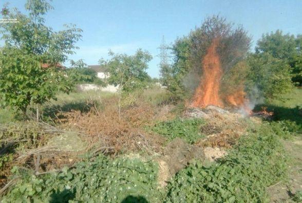 До 1360 гривень штрафу заплатить хмельничанин за спалювання листя