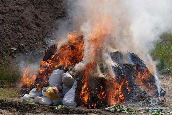 У Хмельницькому спалили наркотики вартістю понад 2,5 мільйони гривень