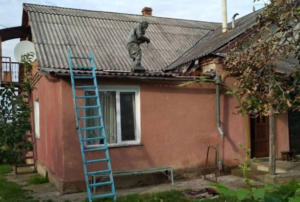 Аби знищити гніздо шершнів, кам'янчани викликали рятувальників