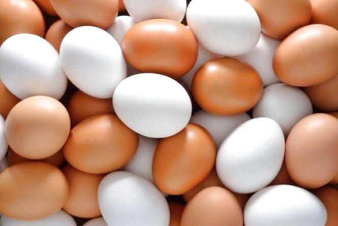 Любите яйця? А що ви про них знаєте? (ТЕСТ)