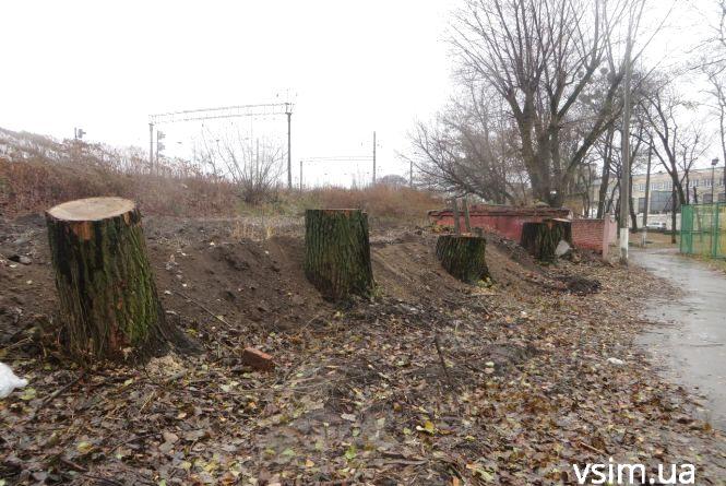 В парку Франка під туалет за мільйон зрізали дерева