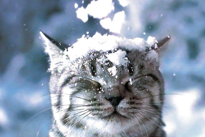 У четвер, 5 січня, у Хмельницькому мороз