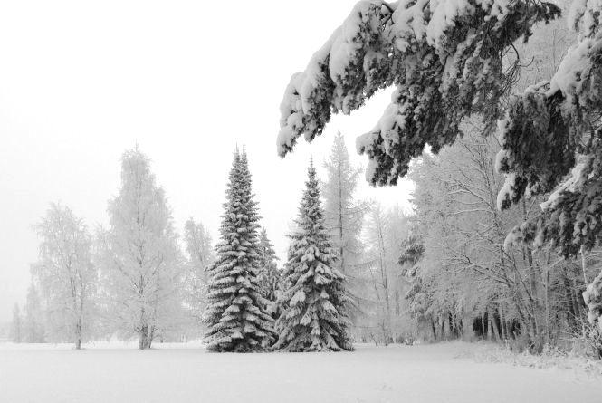 У Хмельницькому 8 січня сніжитиме