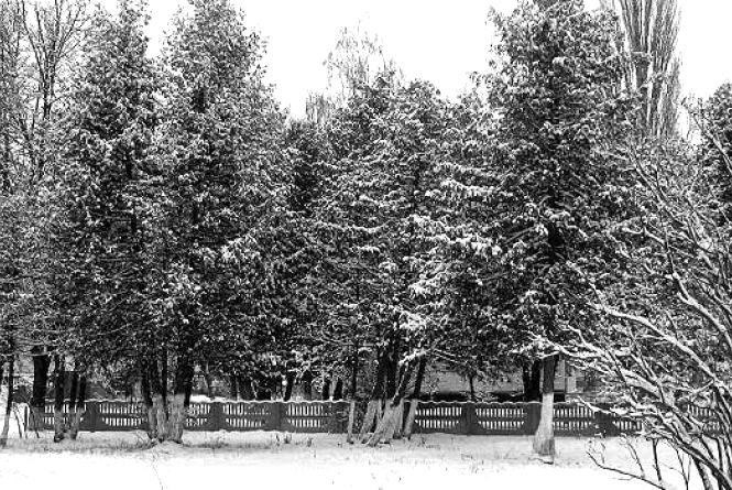 16 січня у Хмельницькому без опадів