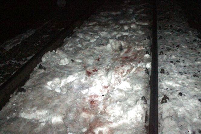 В Ярмолинецькому районі поїзд насмерть збив чоловіка