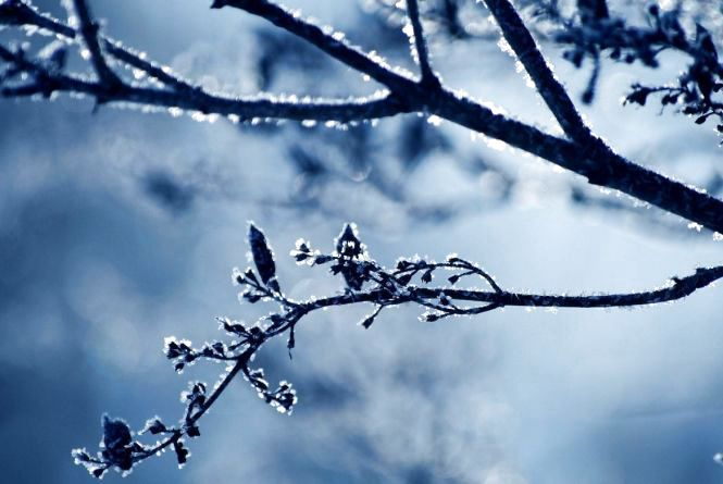 25 лютого у Хмельницькому сонячно