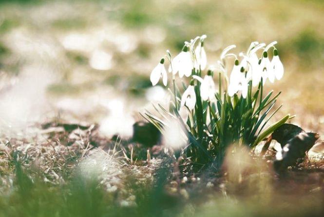 У четвер, 2 березня, в Хмельницькому сонячно