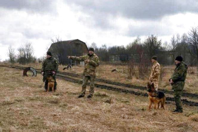 Собаки з різних куточків України вчились затримувати злочинців та шукати зброю